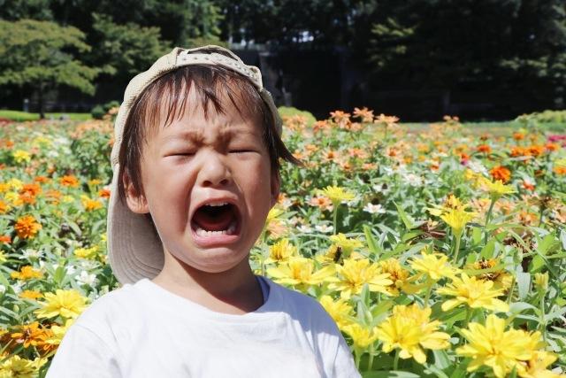 泣く5歳児